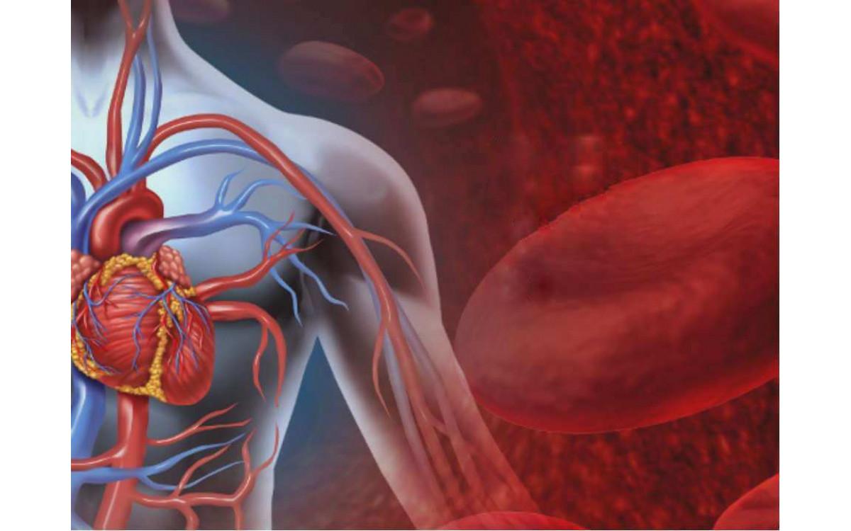 ВИЧ / СПИД и каннабиноиды
