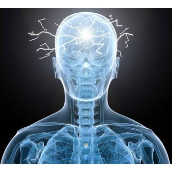 Дозировка КБД для снижение эпилептических припадков