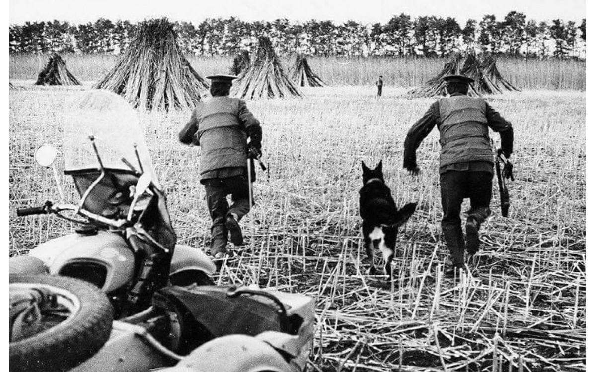 В Советском Союзе конопля была  сельскохозяйственной культурой