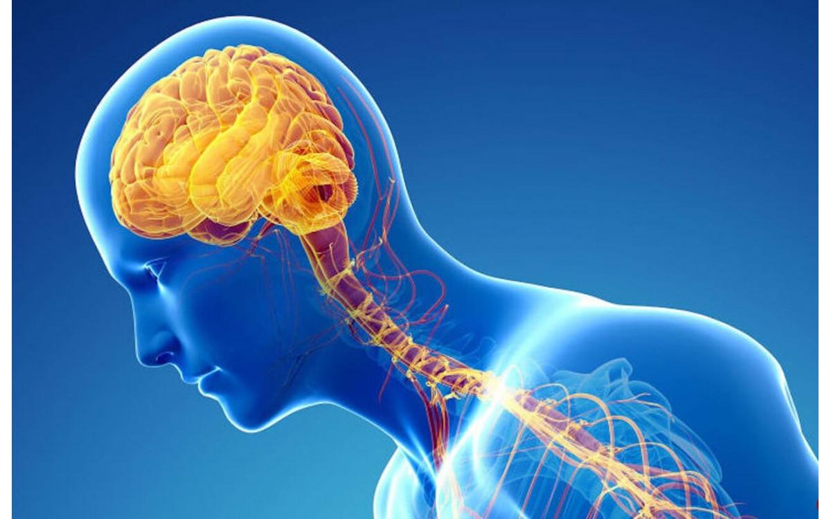 КБД в лечении шизофрении и психозов при болезни Паркинсона